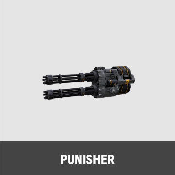 Punisher T(パニッシャー T)0.png